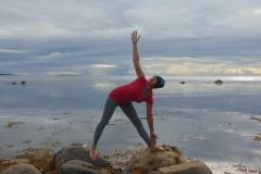 Панарина йога аэройога