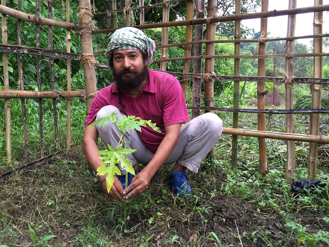 Кешав Дев сажает дерево