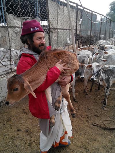 Кешав джи и корова